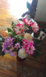 Flowers brighten my day during recuperation. Of course, Moo is nearby too.